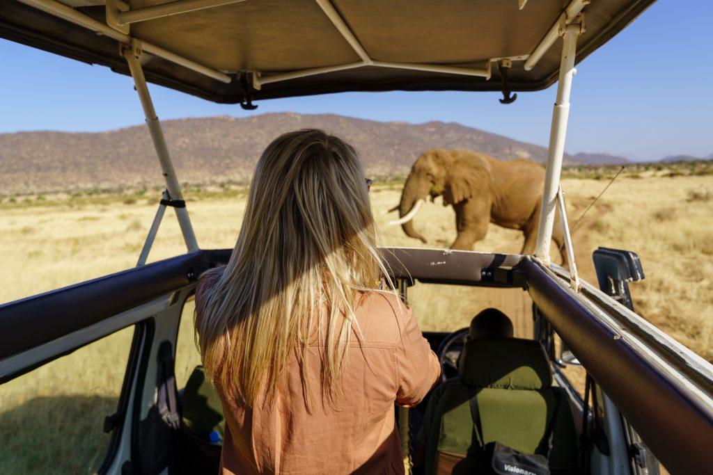 Kenya Family Safari Highlights