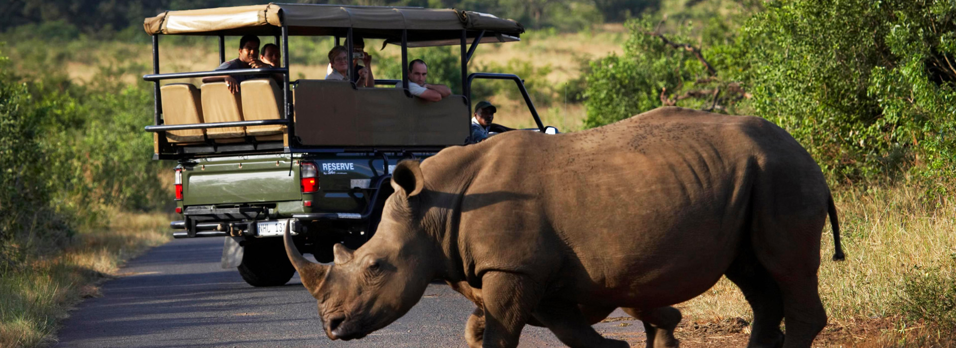 12 days Protect the Rhino Safari