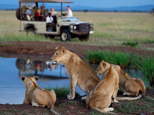 9 Days Jewels of Kenya Safaris