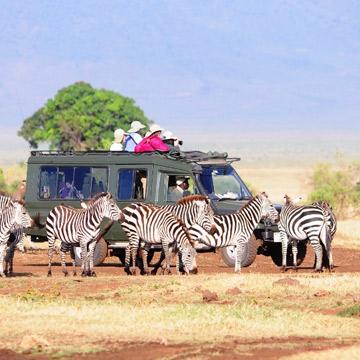 >Kenya Tanzania Combined Safari