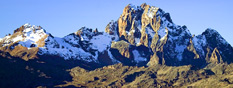 Mt Kenya National Park